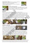 Завершающие штрихи делают наши пинетки настоящими кедами, описание 6
